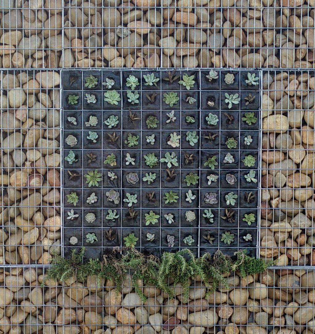gaviones decorativos de piedra paredes medida Nueva concepción de jardines verticales, gavión - Arisac