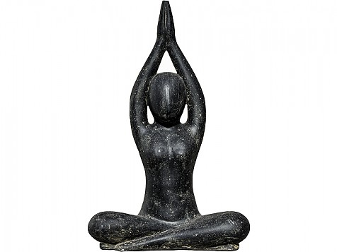 Figura Asana Yoga